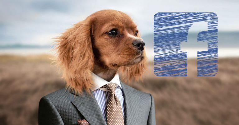 Facebookin taistelu klikkiansoja vastaan